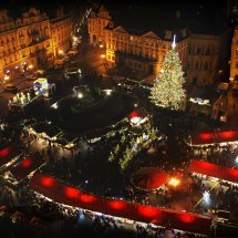 Weihnachten auf dem Siegerpodest (2)