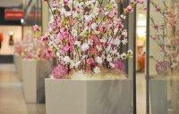 Spring decoration, Černá Růže